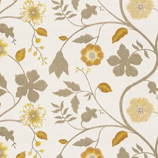 Saffron Botanical Drapery and Upholstery Fabric by Kravet
