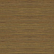 Saddle Stripes Drapery and Upholstery Fabric by Kravet