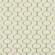 Chartreuse Embroidery Drapery and Upholstery Fabric by Duralee