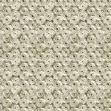 Platinum Metallic Drapery and Upholstery Fabric by Kravet
