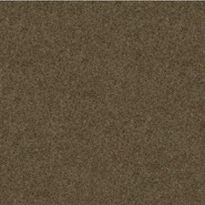 Sable Solids Drapery and Upholstery Fabric by Kravet