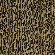 Brown/Beige/Gold Animal Skins Drapery and Upholstery Fabric by Kravet