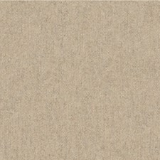 Biscotti Solids Drapery and Upholstery Fabric by Kravet