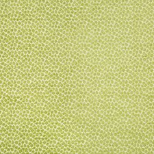 Green/White Animal Skins Drapery and Upholstery Fabric by Kravet