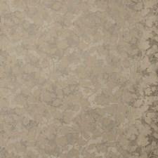 Platinum Botanical Drapery and Upholstery Fabric by Kravet
