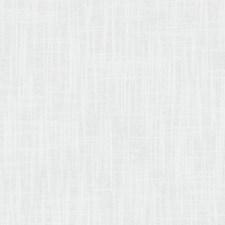 358566 DK61237 18 White by Robert Allen