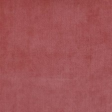 Cedarberry Drapery and Upholstery Fabric by Duralee