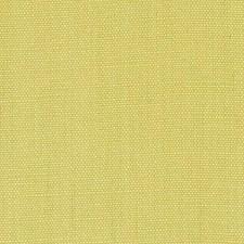 366715 DK61430 609 Wasabi by Robert Allen