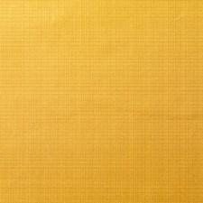 375422 DK61566 264 Goldenrod by Robert Allen