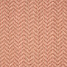 Posh Coral Drapery and Upholstery Fabric by Silver State