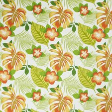 Pina Colada Floral Drapery and Upholstery Fabric by Trend