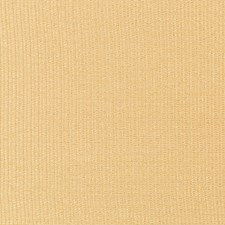 Butterscotch Solids Drapery and Upholstery Fabric by Kravet