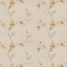 Butterscotch Embroidery Drapery and Upholstery Fabric by Fabricut