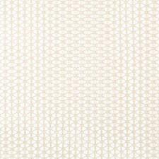 Parchment Small Scale Drapery and Upholstery Fabric by Kravet