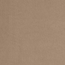 Latte Solid Drapery and Upholstery Fabric by Trend