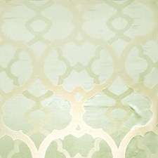 Aloe Global Drapery and Upholstery Fabric by Vervain