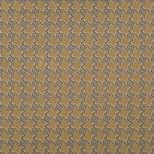 509790 HV16240 494 Sesame by Robert Allen