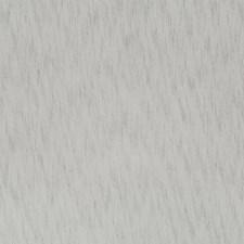 510524 DS61774 159 Dove by Robert Allen