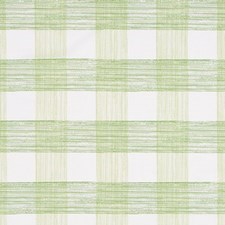 Celery Drapery and Upholstery Fabric by Robert Allen
