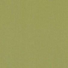 511808 DK61731 213 Lime by Robert Allen