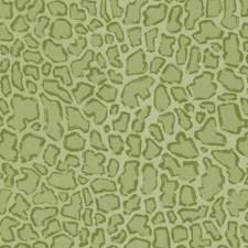 516209 DP42686 212 Apple Green by Robert Allen