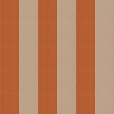 Spice Stripes Drapery and Upholstery Fabric by Trend