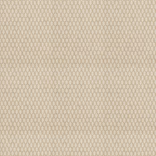 Straw Global Drapery and Upholstery Fabric by Stroheim