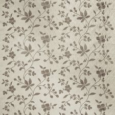 Moonstone Embroidery Drapery and Upholstery Fabric by Stroheim