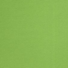 Spearmint Solid Drapery and Upholstery Fabric by Fabricut