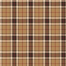 Acorn Check Drapery and Upholstery Fabric by Fabricut