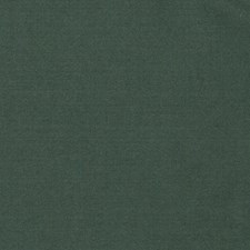 Pine Solid Drapery and Upholstery Fabric by Trend