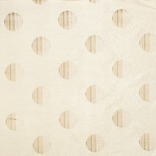 Parchment Embroidery Drapery and Upholstery Fabric by Trend