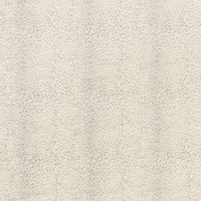 Dove Drapery and Upholstery Fabric by Schumacher