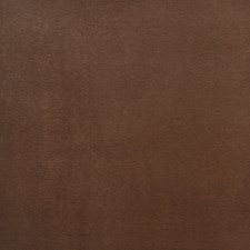 Oak Solid Drapery and Upholstery Fabric by Trend