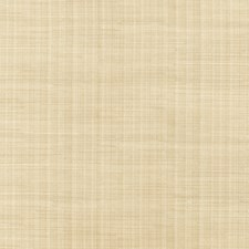 Aloe Texture Plain Drapery and Upholstery Fabric by Trend