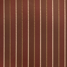 Tabasco Stripes Drapery and Upholstery Fabric by Trend