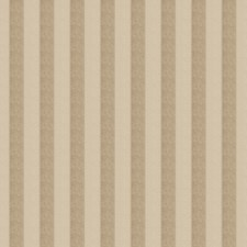 Mushroom Stripes Drapery and Upholstery Fabric by Trend
