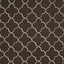 Ash Embroidery Drapery and Upholstery Fabric by Trend