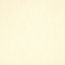Custard Texture Plain Drapery and Upholstery Fabric by Trend