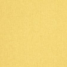 Lemon Solid Drapery and Upholstery Fabric by Trend