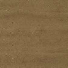 Sable Solid Drapery and Upholstery Fabric by Trend