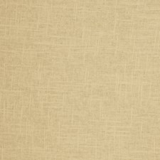 Cashew Solid Drapery and Upholstery Fabric by Trend