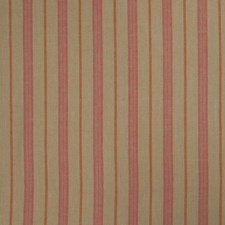 Redbud Stripes Drapery and Upholstery Fabric by Trend