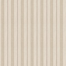 Stone Stripes Drapery and Upholstery Fabric by Trend