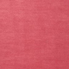 Sherbert Solid Drapery and Upholstery Fabric by Stroheim