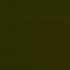 Lean Green Solid Drapery and Upholstery Fabric by S. Harris