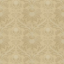 Goldust Damask Drapery and Upholstery Fabric by Vervain