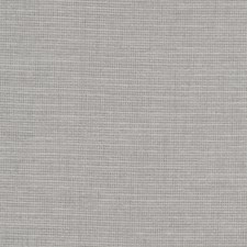 Silver Solid Drapery and Upholstery Fabric by Trend