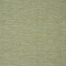 Fern Drapery and Upholstery Fabric by Schumacher