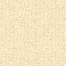 Ivory Jacquards Drapery and Upholstery Fabric by Brunschwig & Fils